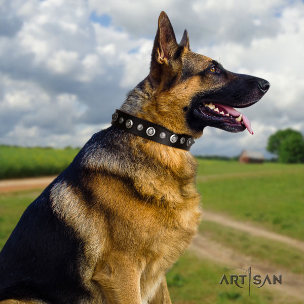 German Shepherd adorned natural genuine leather dog collar for your lovely canine