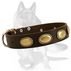 Super strong leather collar