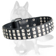 Adorned leather  collar with silver pyramids