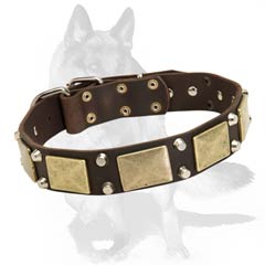 Leather collar with nickel plated hardware