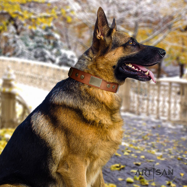 German Shepherd adorned full grain genuine leather dog collar for your beautiful dog