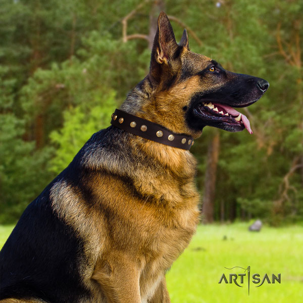 German Shepherd decorated natural genuine leather dog collar for your attractive four-legged friend