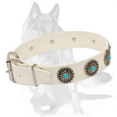 Durable collar with blue stones