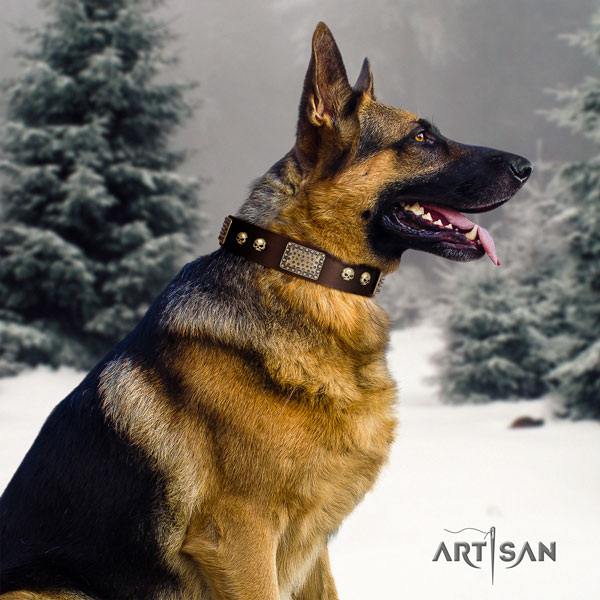 German Shepherd adorned natural genuine leather dog collar for your impressive four-legged friend
