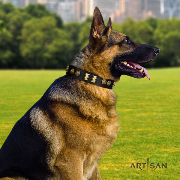 German Shepherd decorated full grain leather dog collar for your impressive doggie