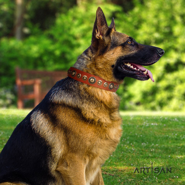 German Shepherd perfect fit full grain natural leather dog collar