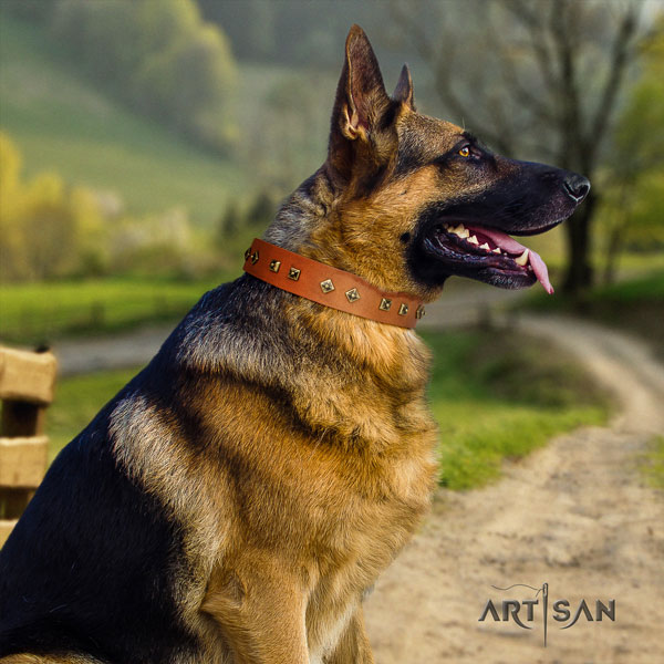 German Shepherd embellished full grain leather dog collar for your handsome doggie