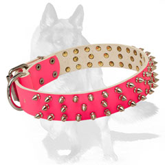 Special strong flexible leather collar