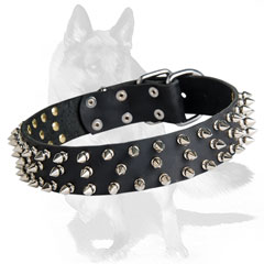 Thick leather collar with hand set spikes