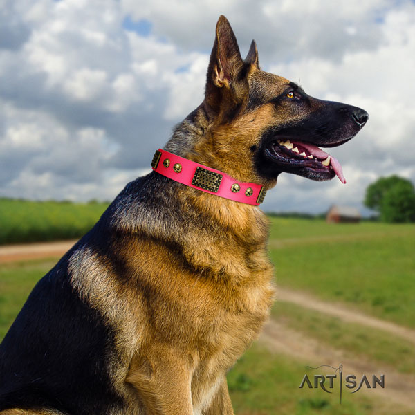 German Shepherd decorated genuine leather dog collar for your lovely dog