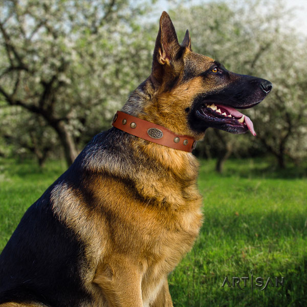 German Shepherd decorated genuine leather dog collar for your lovely doggie