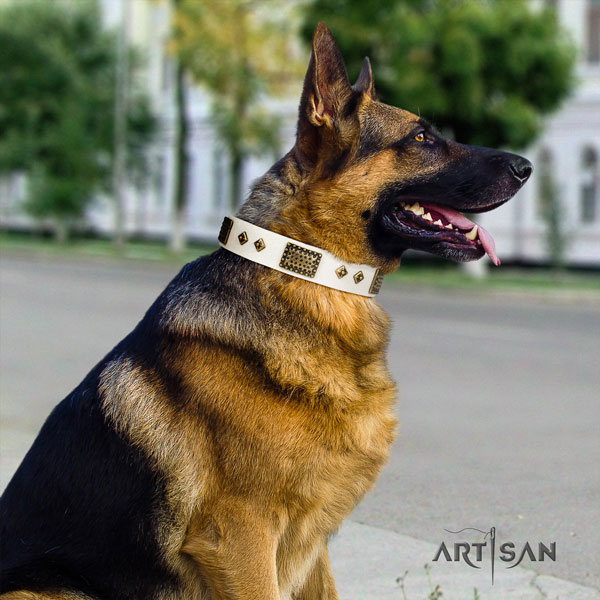 German Shepherd studded full grain leather dog collar for your handsome dog