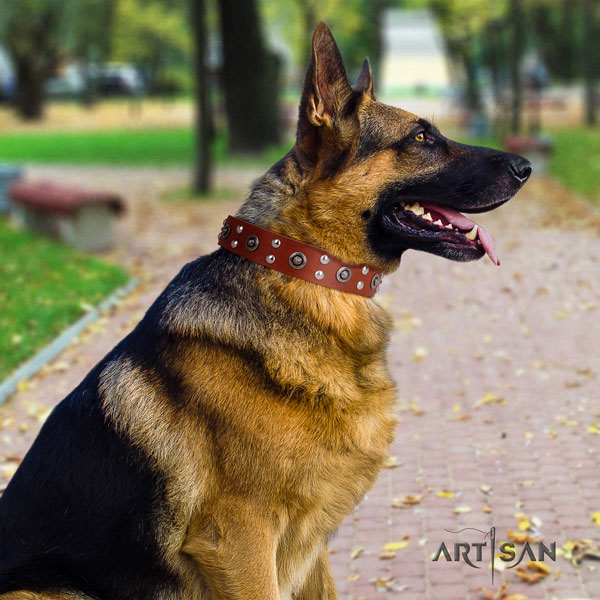 German Shepherd convenient full grain leather dog collar