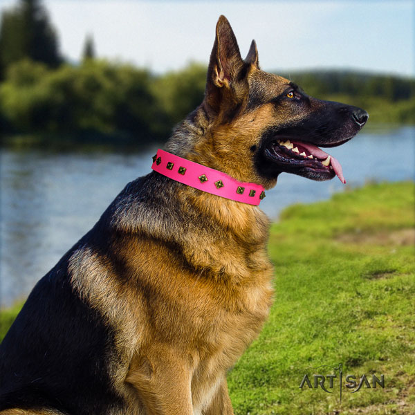 German Shepherd adorned full grain genuine leather dog collar for your stylish dog