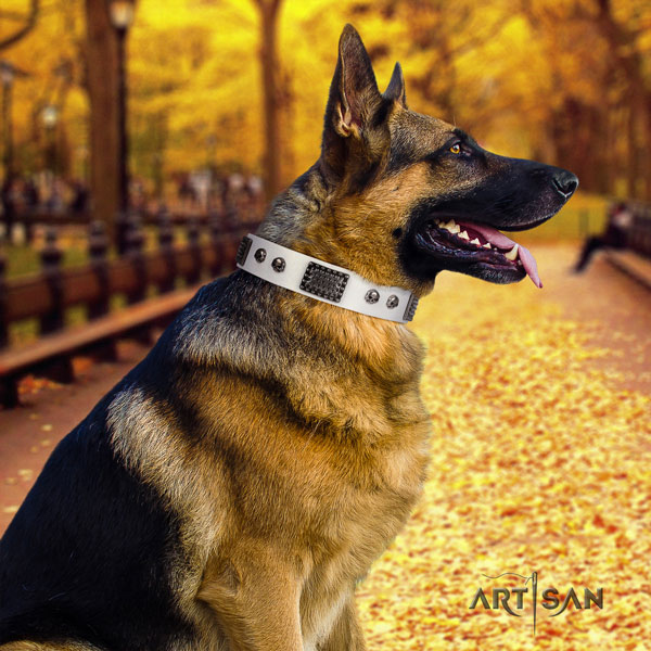 German Shepherd embellished leather dog collar for your attractive four-legged friend