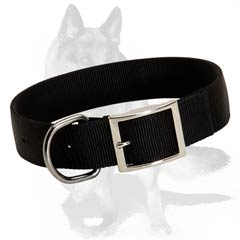 Comfortable all weather nylon collar