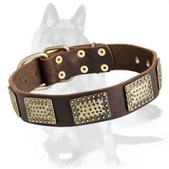Leather  collar with brass decorations