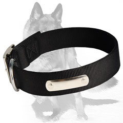 High tensile Strength Nylon Collar for your Dog