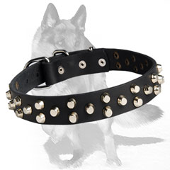 Studded Leather Dog Collar with robust rust-proof buckle