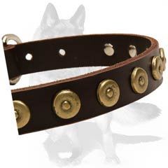 Safe Collar with steel nickle plated hardware