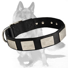Durable Collar Stitched with nylon thread