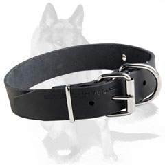Soft leather Collar with Stainless steel nameplate