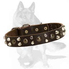 Securely riveted German Shepherd leather collar with studs and pyramids