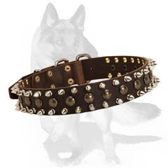 Leather collar with nickel plated spikes and brass studs