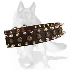 Non-rusting leather collar with hand set spikes and studs