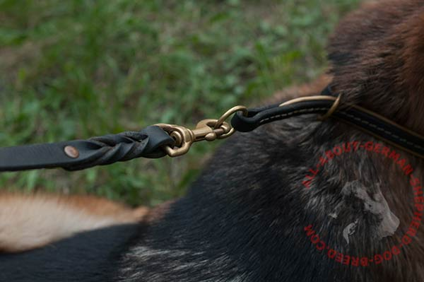 Leather German Shepherd choke collar with rust-proof fittings