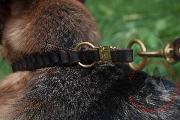 Braided leather German Shepherd collar with brass buckle and O-rings