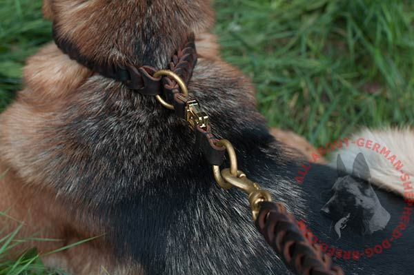 Leather German Shepherd collar with rust-proof fittings