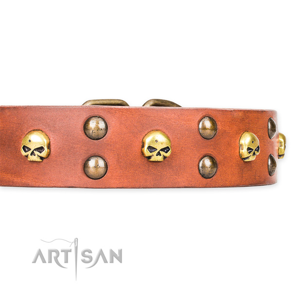 Leather dog collar with worked out edges for convenient strolling