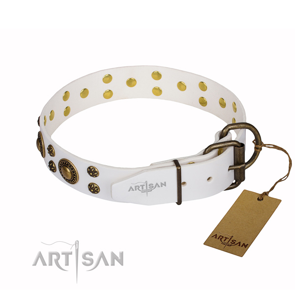 Multifunctional leather collar for your noble four-legged friend