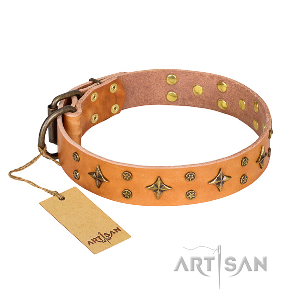 Functional leather collar for your favourite four-legged friend