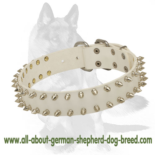 Spiked white leather dog collar