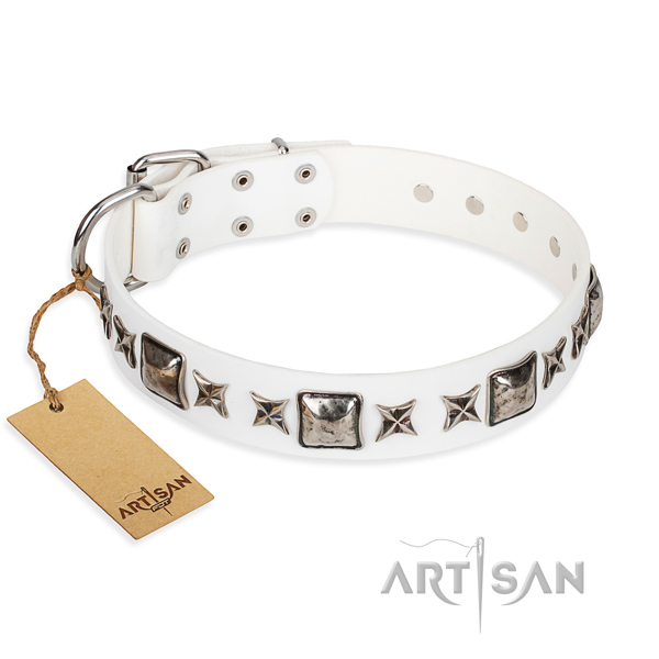 Long-wearing leather dog collar with chrome plated fittings