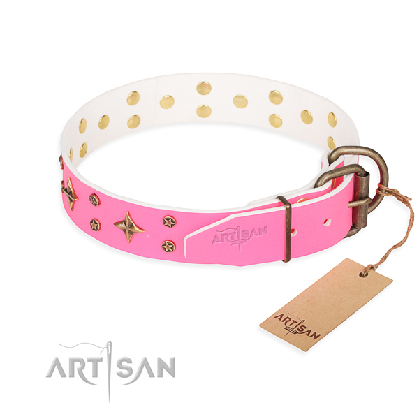Tough leather dog collar with strong details