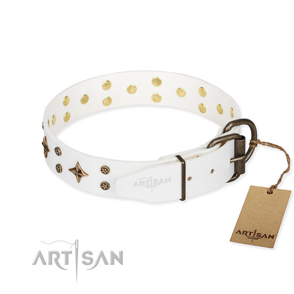 Practical leather collar for your gorgeous canine