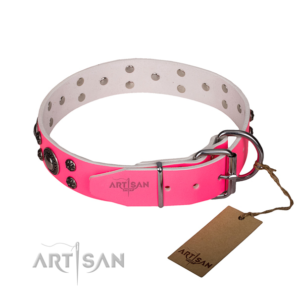 Tear-proof leather collar for your handsome dog