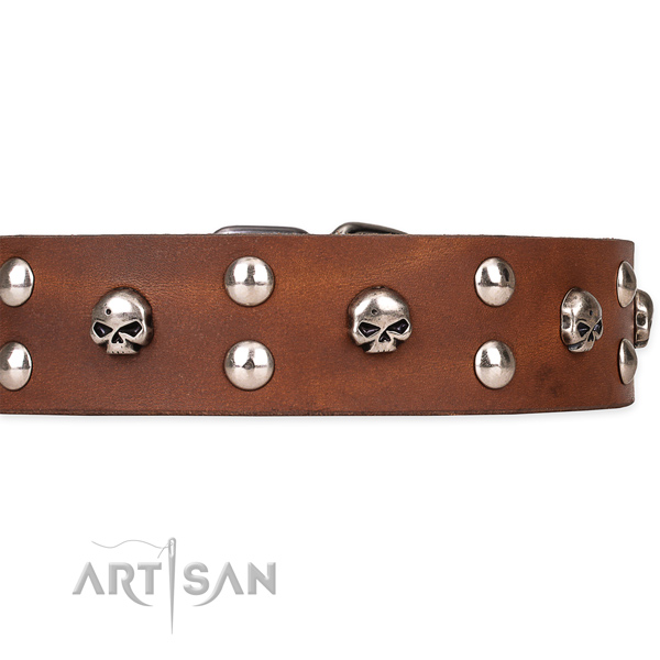 Heavy-duty leather dog collar with rust-resistant elements