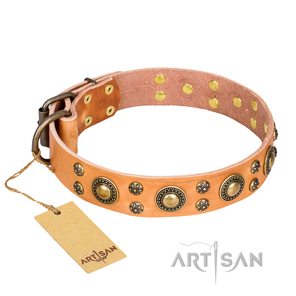 Tough leather dog collar with reliable hardware