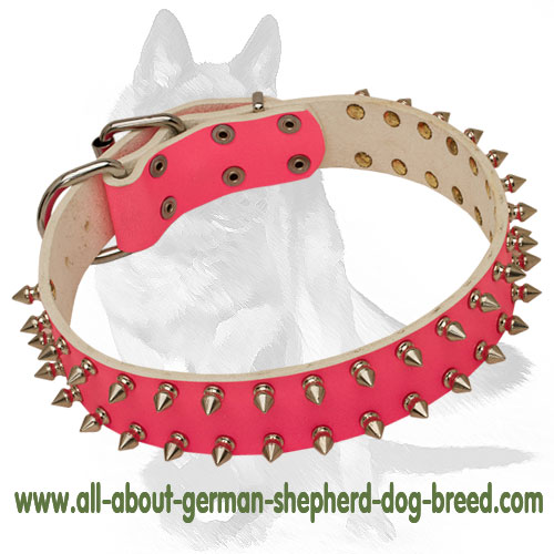 Spiky pink leather dog collar