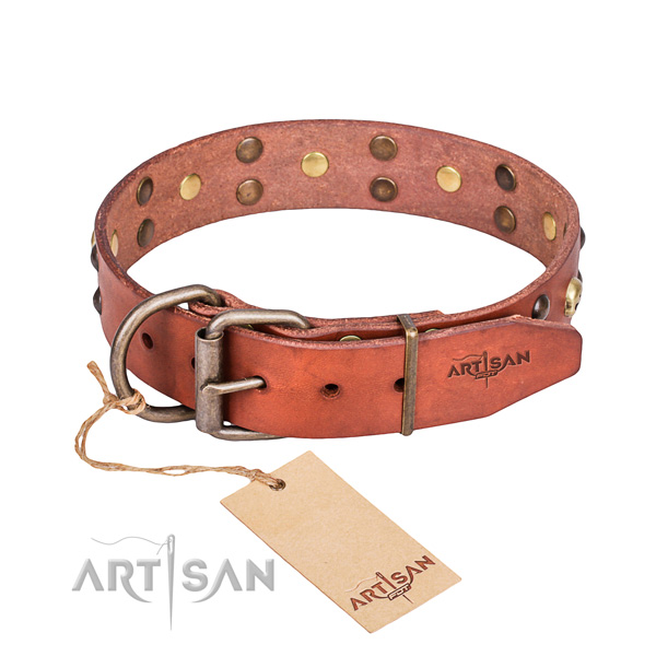 Hardwearing leather dog collar with reliable details