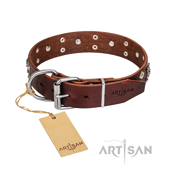 Long-lasting leather dog collar with sturdy details
