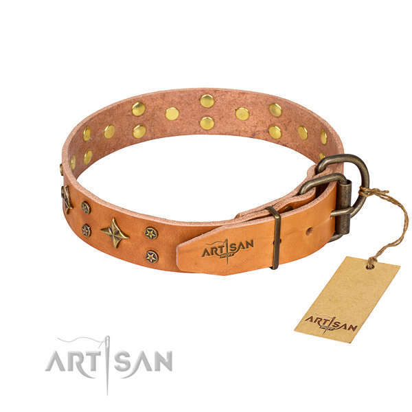Hardwearing leather dog collar with non-corrosive fittings