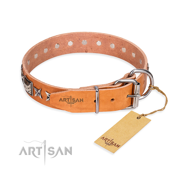 Versatile leather collar for your gorgeous pet