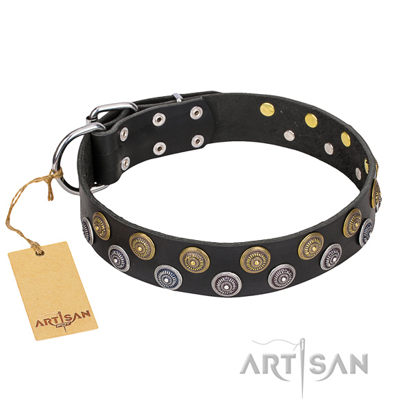 Stylish leather collar for your darling canine