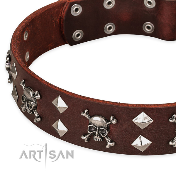Fancy leather dog collar for reliable usage
