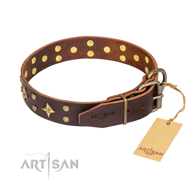 Durable leather collar for your favourite four-legged friend